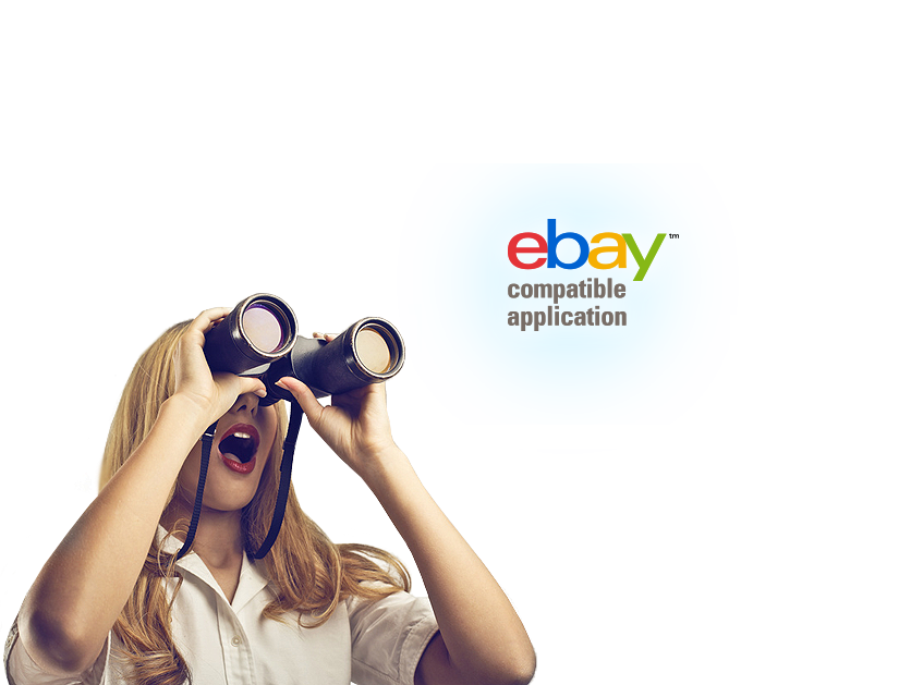 eBay Shop-Design